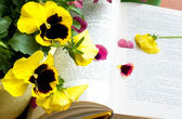 Flowers and petals on book — Foto Stock