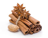 Spices. Cinnamon and anise. — Stock Photo