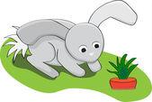 Bunny — Vecteur