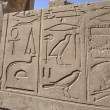 Egyptian hieroglyphic carvings on a wall — Stock Photo