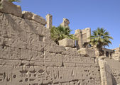 Egyptian hieroglyphic carvings on a wall — Stockfoto
