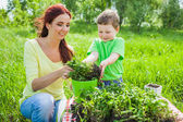 Mom and son on the nature — Stock Photo