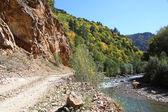 Górska droga wzdłuż rzeki — Zdjęcie stockowe