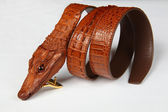 Male alligator strap-2 — Stock Photo
