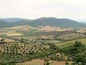 Countryside near Capalbio in Toscana — Stock Photo