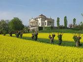 Palladio's Villa La  Rotonda  in Vicenza, Italy — Stok fotoğraf