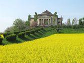 Palladio's Villa Capra La Rotonda  in Vicenza, Italy — Stock Photo