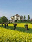 Palladio's Villa La Rotonda  in Vicenza, Italy — Stock Photo