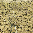 Stock Photo: Dry soil in lake bottom during dryness