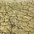 Dry soil in lake bottom during dryness — Stock Photo #15710409