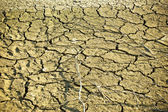 Dry soil in lake bottom during dryness — Stock Photo