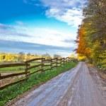 herfst kleurrijke berg onverharde weg — Stockfoto
