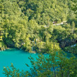 Pure nature of Plitvice lakes national park - Zdjęcie stockowe
