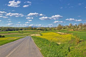Prigorje region spring lanscape road — Stock Photo