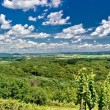Green landscape panorama under blue sky — Stock Photo