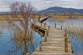 Vrana lago parque malecón de madera — Foto de Stock