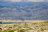 Stone desert under Velebit mountain — Stock Photo