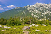 Crnopac peak of Velebit mountain — Stock Photo
