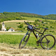 Stock Photo: Mountain bike in green landscape