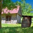 Wooden cottage and barrel in vineyard — Stock Photo