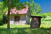 Holzhaus und barrel im weinberg — Stockfoto