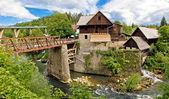 Village of Rastoke river canyon — 图库照片