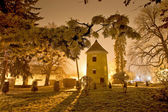 Vrbovec winter night scene in park — Stock Photo