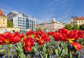 Zagreb colorful flora and architecture — Photo