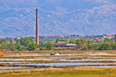 Salt fields of Nin view — Stock Photo