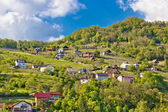 Zagorje hills vineyards and cottages — Stock Photo