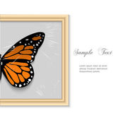 Butterfly in wooden frame — Stock Vector
