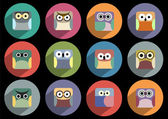 Flat icons of owls — Stock Vector