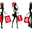 Women shopping with the number 2014 on their bags. — Stock Vector