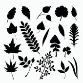 Leaf silhouettes — Vector de stock