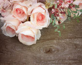 Roses — Stockfoto