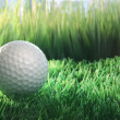 Stock Photo: Golf ball on green grass field