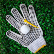 Golf ball and green grass with equipment — 图库照片