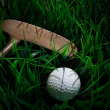Golf ball on green grass with putter and driver — Stock Photo