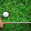 Golf ball on green grass with putter and driver — Stockfoto
