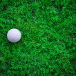 Golf ball on green grass with putter and driver — Stock Photo #19133629