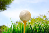 Golf ball and green grass field with equipment — Stock Photo
