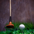 Golf ball on green grass with putter and driver — Stock Photo #19153025