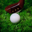 Golf ball on green grass with putter and driver — Stock Photo #19153187