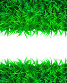 Artificial green grass with white space use as background backdrop — Stock Photo
