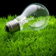 Stock Photo: Ligh bulb on green grass