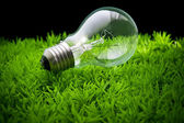 Ligh bulb on green grass — Stock Photo
