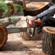 Stock Photo: Lumberjack cutting a tree trunk with chainsaw
