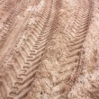 Pattern of tractor wheel printed on sand beach use as nature background — Stock Photo