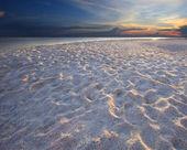 Sea scene in natural — Stock Photo