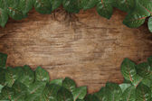Green leaves on wood texture background — Stock Photo